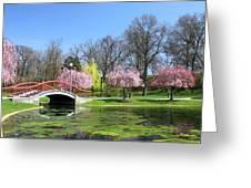 Spring At Italian Lake Greeting Card by Lori Deiter