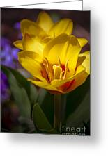 Spring Bloom In Yellow Greeting Card by Julie Palencia