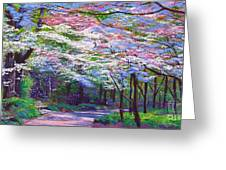 Spring Blossom Pathway Greeting Card by David Lloyd Glover
