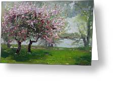 Spring By The River Greeting Card by Ylli Haruni