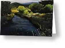 Spring Creek Greeting Card by Suzanne Tynes