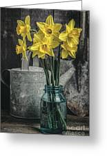 Spring Daffodil Flowers Greeting Card by Edward Fielding