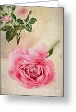 Spring Elegance Greeting Card by Darren Fisher