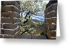 Spring Flowers At The Great Wall Greeting Card by Larry Moloney
