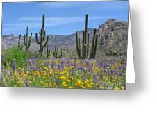 Spring Flowers In The Desert Greeting Card by Elvira Butler