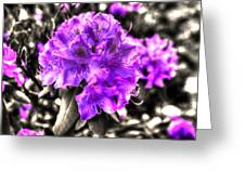 Spring Flowers Greeting Card by Mark Alexander