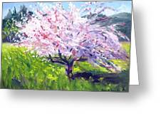 Spring Glory Greeting Card by Karin  Leonard