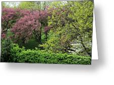 Spring In St. Louis Greeting Card by Theresa Willingham