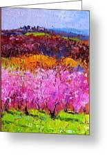 Spring In Tuscany Greeting Card by Tommaso Manzi