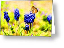 Spring Magic Greeting Card by Darren Fisher