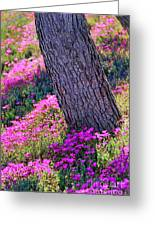 Spring Meadow Greeting Card by Mariola Bitner