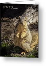 Spring Nature At Spnc Greeting Card by LeeAnn McLaneGoetz McLaneGoetzStudioLLCcom