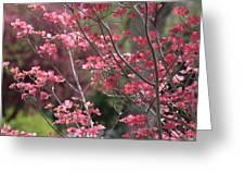 Spring Neighborhood Greeting Card by Carol Groenen