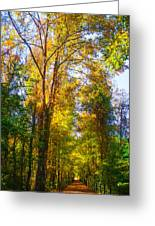 Spring Path Greeting Card by Parker Cunningham