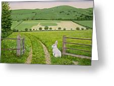Spring Rabbit Greeting Card by Ditz