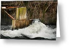 Spring River Rush Greeting Card by Shutter Happens Photography