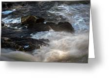 Spring Thaw II Greeting Card by Bob Orsillo