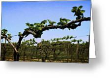 Spring Vineyard Greeting Card by Michelle Calkins