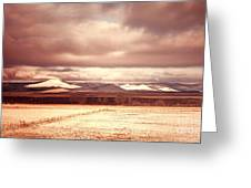 Springerville Arizona View Greeting Card by Donna Van Vlack