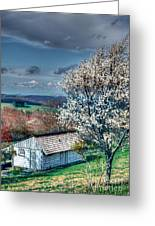 Springtime In The Blue Ridge Mountains I Greeting Card by Dan Carmichael