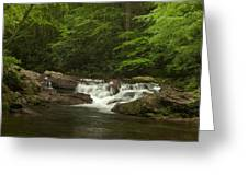 Springtime Rapids Greeting Card by Andrew Soundarajan