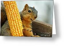 Squirrel Greeting Card by Lori Tordsen