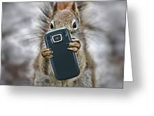 Squirrel With Cellphone Greeting Card by Mike Agliolo