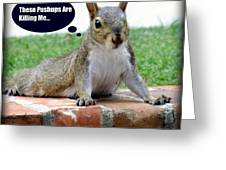 Squirrely Push Ups Greeting Card by KAREN WILES