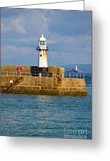 St Ives And Godrevy Lighthouses Cornwall Greeting Card by Terri  Waters