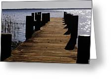 St Johns River FLorida - A chain of lakes Greeting Card by Christine Till
