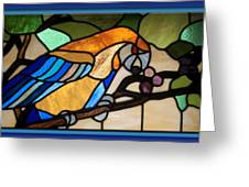 Stained Glass Parrot Window Greeting Card by Thomas Woolworth