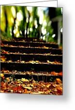 Stairs To Heavan Greeting Card by Reka Lendvai