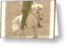 Stallion Strides Greeting Card by Patricia Keller
