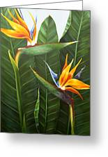 Standing Room Only Greeting Card by Lorraine Ulen