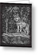 Standing Tall Greeting Card by Ernie Echols