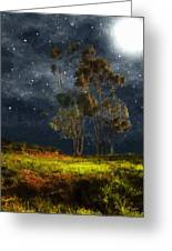 Starfield Greeting Card by RC DeWinter
