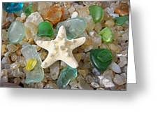 Starfish Fine Art Photography Seaglass Coastal Beach Greeting Card by Baslee Troutman