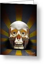Staring Skull Greeting Card by Carlos Caetano