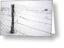 Stark Realities Of Winter Greeting Card by John Haldane