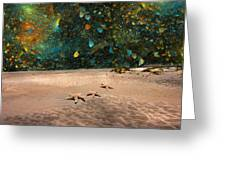 Starry Beach Night Greeting Card by Betsy C  Knapp