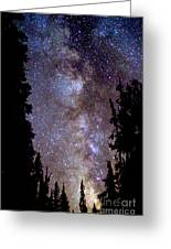 Starry Night -  The Milky Way Greeting Card by Douglas Taylor