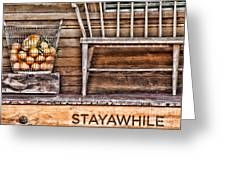 Stayawhile Greeting Card by Diana Sainz