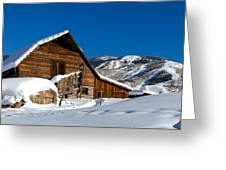 Steamboat Springs Colorado Greeting Card by Teri Virbickis