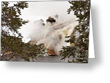 Steamy Bison Greeting Card by Sue Smith