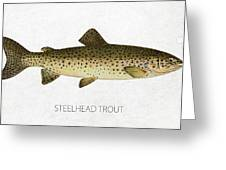 Steelhead Trout Greeting Card by Aged Pixel