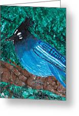 Stellar's Jay Greeting Card by Lloyd Alexander