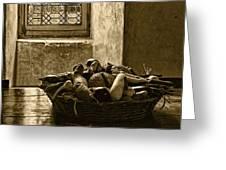 Still Life At Chenonceau Greeting Card by Nikolyn McDonald