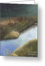 Still Water Greeting Card by Ginny Neece