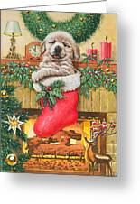 Stocking Stuffer Greeting Card by Richard De Wolfe