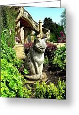 Stone Cat Greeting Card by Patrick J Murphy